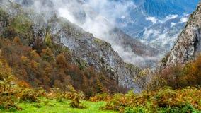 Autumn mountain landscape. In Asturias, northern Spain Stock Photography