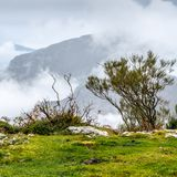 Autumn mountain landscape. In Asturias, northern Spain Stock Images