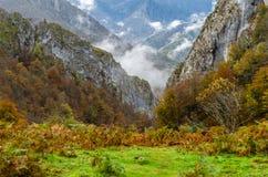 Autumn mountain landscape. In Asturias, northern Spain Royalty Free Stock Photo