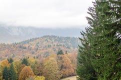 Autumn mountain landscape background. Stock Photos