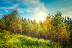 Autumn mountain  landscape Stock Photography