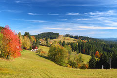 Autumn mountain landscape with blue sky Royalty Free Stock Image