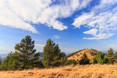 Autumn mountain landscape Stock Images