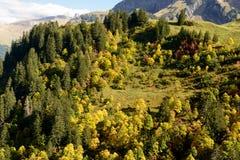 Autumn mountain landscape Royalty Free Stock Photo
