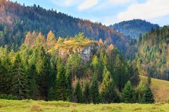 Autumn mountain landscape Royalty Free Stock Image