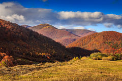 Autumn mountain landscape with red and yellow forest leaves Stock Image