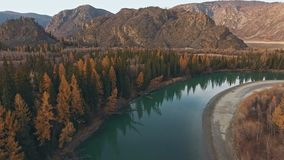 Autumn mountain landscape: river flows along mountainous terrain. Autumn mountain landscape: calm river flows along the mountainous terrain, yellowed trees on stock footage