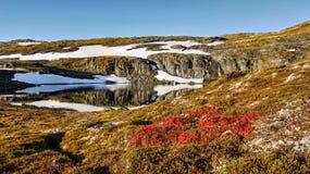 Autumn Mountain Landscape Scenery Royalty Free Stock Photo