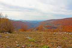 Autumn mountain landscape Royalty Free Stock Image
