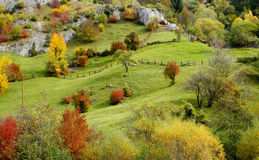 Autumn mountain meadow Royalty Free Stock Photo