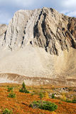 Autumn mountain and meadow Royalty Free Stock Images