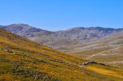 Autumn on mountain Stock Images