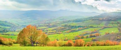Autumn mountain panorama. Colorful autumn mountain panorama. Wide view of Carpathians, Ukraine Royalty Free Stock Photo