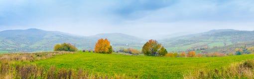 Autumn mountain panorama. Colorful autumn mountain panorama. Wide view of Carpathians, Ukraine Royalty Free Stock Image