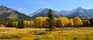 Autumn mountain panorama Stock Images