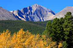 Autumn And Mountain Peaks. Autumn Aspen Trees and Rocky Mountains Longs Peak Stock Images
