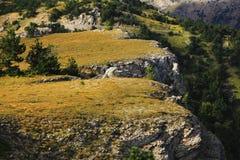 Autumn mountain plateau and forests. Autumn mountain plateau and green coniferous forests Stock Photography