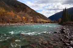 Autumn mountain river Royalty Free Stock Images