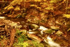Autumn mountain river. Stream in the forest with colorful red fallen dry leaves, natural seasonal background Royalty Free Stock Images