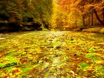 Autumn mountain river with blurred waves,, fresh green mossy stones and boulders Stock Image