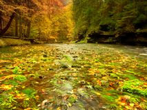 Autumn mountain river with blurred waves,, fresh green mossy stones and boulders Royalty Free Stock Photography