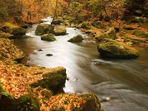 Autumn mountain river with blurred waves, fresh green mossy stones, colorful fall Royalty Free Stock Photos