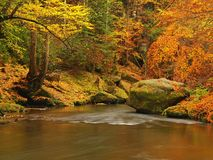 Autumn mountain river with blurred waves, fresh green mossy stones, colorful fall Royalty Free Stock Images