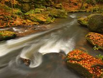 Autumn mountain river with blurred waves, fresh green mossy stones, colorful fall Royalty Free Stock Photography