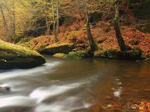 Autumn mountain river with blurred waves, fresh green mossy stones, colorful fall Stock Photography