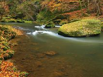 Autumn mountain river with blurred waves, fresh green mossy stones, colorful fall Royalty Free Stock Image
