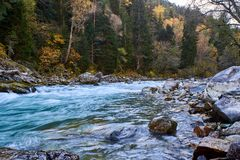 Autumn mountain river with rifts and green water. Bolshoy Zelenchuk River. Russia. stock photography