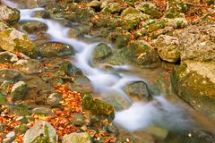 Autumn mountain rivulet Stock Photography