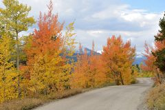 Autumn Mountain Road Royalty Free Stock Images