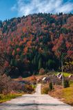 Autumn on a mountain road royalty free stock photos