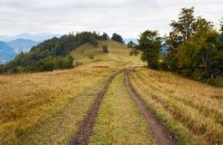 Autumn mountain road view Royalty Free Stock Image