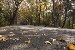 Autumn mountain roads Royalty Free Stock Images