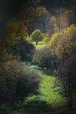 Autumn mountain route Royalty Free Stock Photography