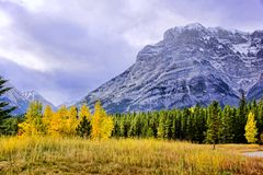 Autumn mountain scene Royalty Free Stock Photography