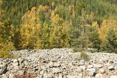Autumn in mountain Royalty Free Stock Photography