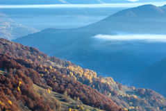 Autumn  mountain slope with colorful forest. Royalty Free Stock Photos