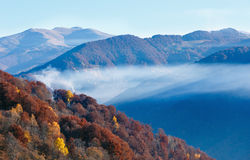 Autumn  mountain slope with colorful forest. Stock Image
