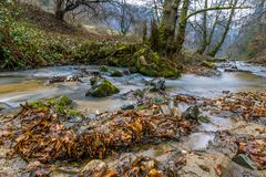 Autumn Mountain stream landscape Royalty Free Stock Image