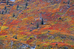 Autumn on the mountain top Royalty Free Stock Photography
