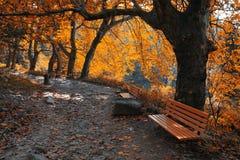 Autumn mountain trail Royalty Free Stock Images