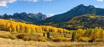Autumn Mountain Valley Royaltyfri Fotografi
