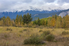 Autumn Mountain Valley Stock Images