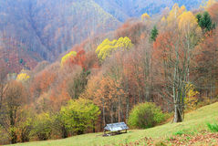 Autumn mountain view Stock Photo