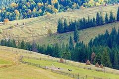 Autumn mountain village Royalty Free Stock Image