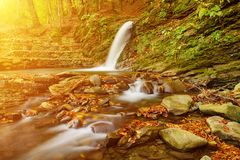 Autumn mountain waterfall Royalty Free Stock Images