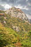 Autumn in mountains. Royalty Free Stock Image